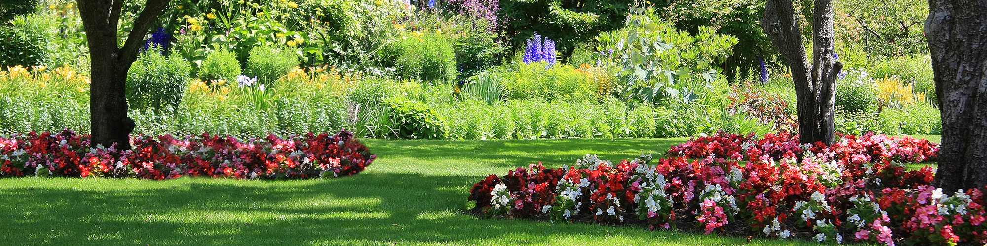 Spring Landscaping commercial landscaping design spring house pa | passionate about