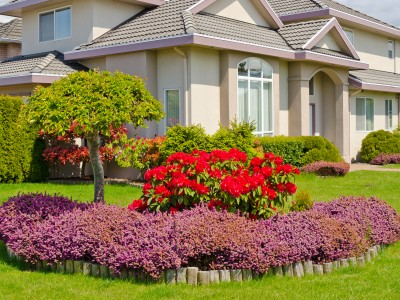 Spring Landscaping landscaping spring house pa | lawn services spring house pa